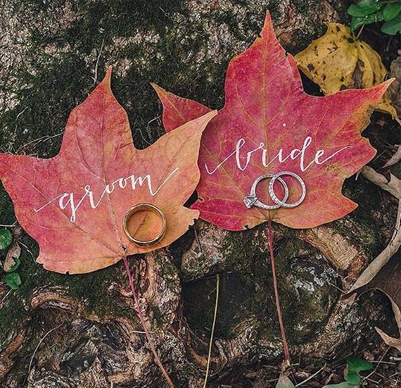 portafedi di foglie