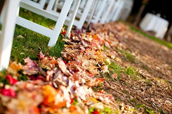 tappeto foglie secche per cerimonia in autunno